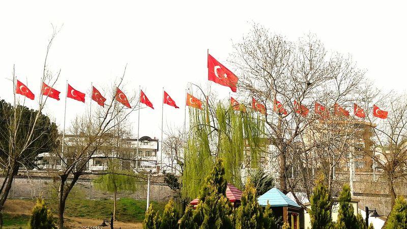 Bayraklar 🇹🇷🇹🇷