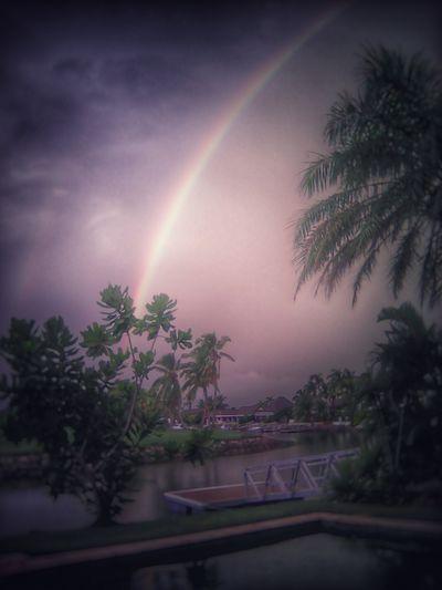 Rainbow Sky Rainbows Rainbow Falls Goodbyesaturday SeeyahLater Fiji The Great Outdoors - 2016 EyeEm Awards