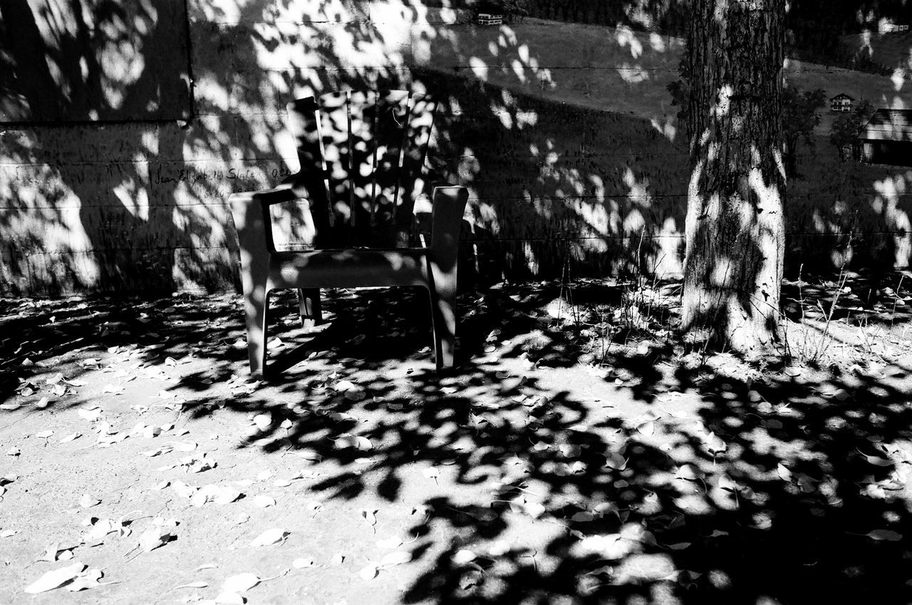 shadow, sunlight, day, nature, tree, outdoors, seat, tree trunk, no people, plant, trunk, chair, selective focus, empty, city, park, architecture, street