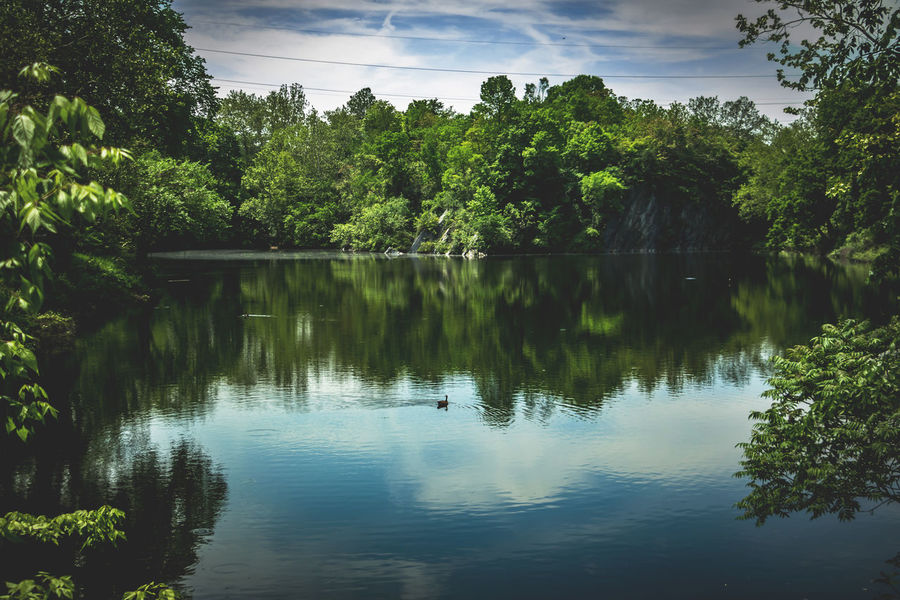 Reflection Quarry Beauty In Nature Calm Cloud Cloud - Sky Day Green Green Color Growth Idyllic Lake Lush Foliage Nature No People Non Urban Scene Non-urban Scene Outdoors Plant Reflection Scenics Sky Standing Water Tranquil Scene Tranquility Tree Water