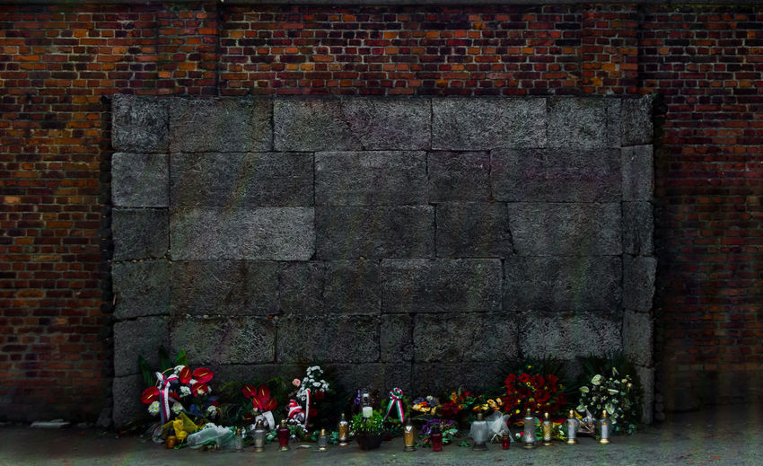 Wall of the executions at the Auschwitz Nazi concentration camp, Poland. Place decorated with flowers dedicated to the victims. Auschwitz  Beautiful Jewish Poland Security World War 2 Architecture Brick Brick Wall Concentration Dead Decoration Elecric Fascism Flower Flowering Plant History Holocaust Memorial Nazis Plant Remember Representation Wall War