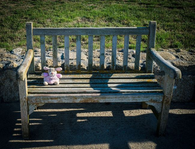 Waiting for my owner to return Alone Forgotten Lost Toy Abandonded Absence Animal Representation Barrier Bench Day Empty Fence Grass Nature No People Outdoors Park Park - Man Made Space Park Bench Plant Railing Representation Seat Shadow Sunlight