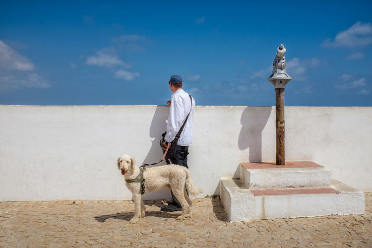 Poodle Portugal Dog Domestic Animals Man With Dog Man With Poodle One Animal One Man Only One Person Outdoors Poodle In Portugal Sunlight White Poodle