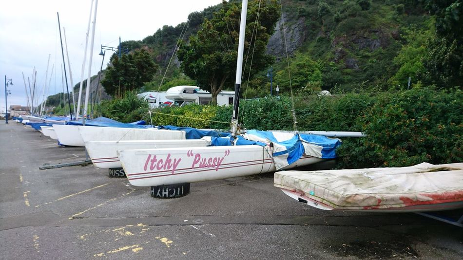 unfortunate name! Boats Boats⛵️ Boats Boats Boats Sailing Sailing Boat Sailing Club Itchy