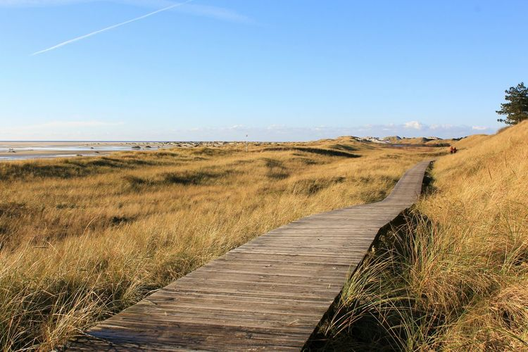Landscape Outdoors Clear Sky Sand Dune Nature Scenics Beach No People Beauty In Nature Water Day Free Freshness Beach Holiday Autumn Nordseeküste Nordsee Betterlandscapes