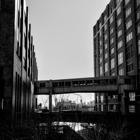 The Highline in New York..... Lgarciaphoto IPhone 7 Plus Iphonephotography Iphoneonly Shot On IPhone IPhoneography IPhone IPhone Photography Highline The High Line Architecture Built Structure Building Exterior Day No People Clear Sky Outdoors City Connection Bridge - Man Made Structure Sky New York NYC Monochrome Black And White