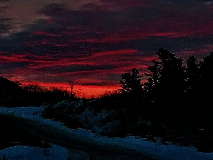 Just a little fun with the colors. Another sunrise from my shop. I hope everyone has a wonderful evening. 😊👋 Tree Sunset Dramatic Sky Beauty In Nature Scenics Night Pinaceae Silhouette Nature Sky No People Multi Colored Cloud - Sky Awe Outdoors Landscape Red Majestic