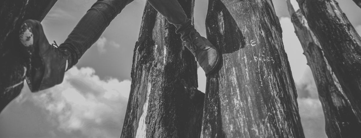 Black & White Black And White Black And White Photography Black&white Blackandwhite Blackandwhite Photography Climbing Clouds Feet Going Up Outdoors Shoes Sky Step Tree Trunk Trunk Up View From Below The Great Outdoors With Adobe The Great Outdoors - 2016 EyeEm Awards Pivotal Ideas People And Places Monochrome Photography Out Of The Box Black And White Friday