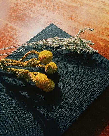 Dry Flower  Notebook Fountainpen