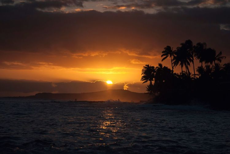 Hawaii Sunset Travel Destinations Fishing Surf Travel Sky Water Tree Sunset Sea Beauty In Nature Scenics - Nature Tranquil Scene Tranquility Nature Sun Tropical Climate Palm Tree Plant Idyllic Sunlight No People Cloud - Sky Land Beach