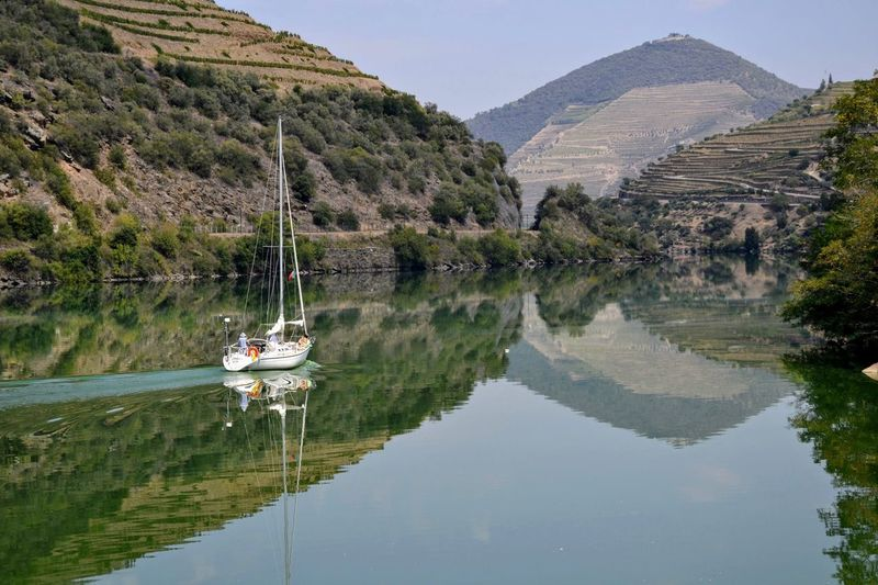 Reflection Water Mountain Tree Nautical Vessel Outdoors LandscapeLake Nature Travel Destinations Outdoor Photography Reflection Water Reflexion Douro, Portugal Douro Lovers Portugallovers Portugalemperspectiva Portugalemfotos Pinaceae Day Boat Boats And Water Boats On The River Boat Life Sailing Boat