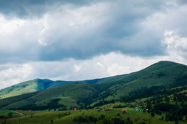 Zlatibor, Serbia Zlatibor ❄️️ Landscape Tree Rural Scene Tree Area Forest Agriculture Hill Field First Eyeem Photo
