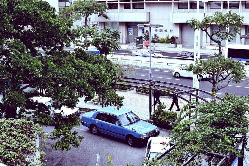 Taxi Stand Okinawa OKINAWA, JAPAN Naha Ryubo Taxi Blue Green Tree