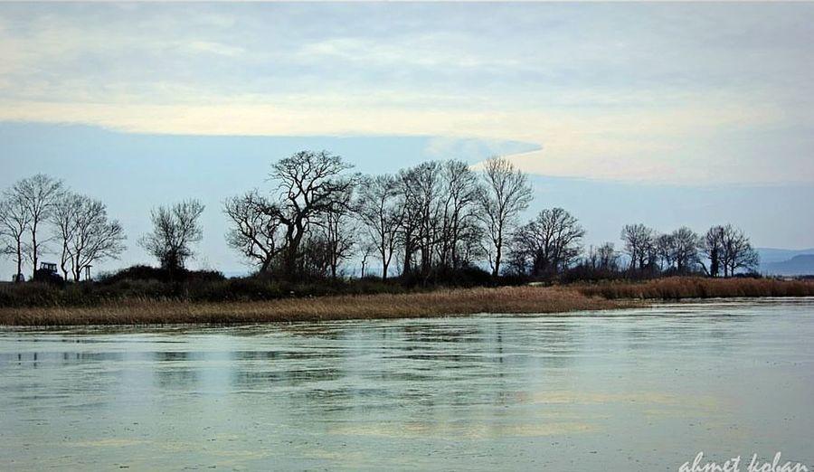 Water Cloud - Sky Tree Sky Reflection Tranquility Lake Nature Scenics Beauty In Nature Tranquil Scene Beach Landscape Winter İğneada Longoz Ormanı Igneada Iğneada Mert Gölü Iğneada/turkey