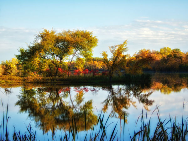 South Bay Reflections. The South bay of the suburban lake usually provides calm waters for wonderful reflections. Autumn Autumn Colors Calm Clouds Lake Lakeshore Outdoors Reflection Tranquil Scene Water Showcase: January