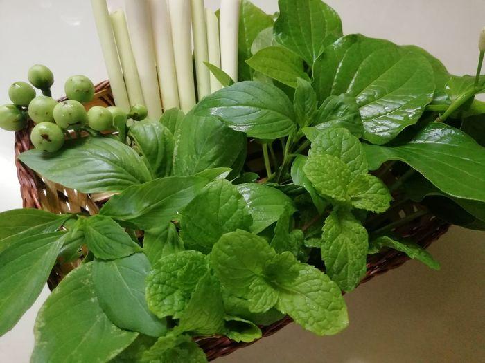 Vegetables Various Preparation  Leaf Close-up Plant Green Color Food And Drink Leaf Vein Leaves Natural Pattern