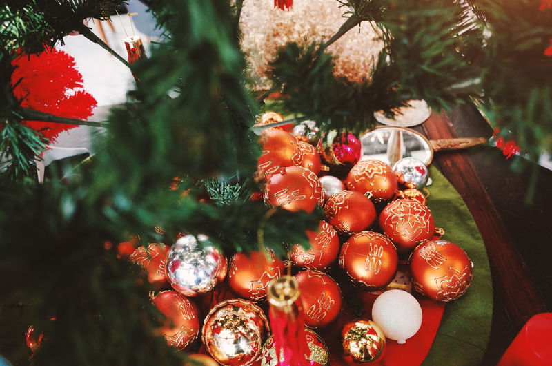 Food Healthy Eating Fruit Food And Drink Red Berry Fruit Tree Wellbeing Freshness Plant Decoration Christmas Holiday Christmas Decoration No People Close-up Nature Day Celebration christmas tree Christmas Ornament Outdoors Ripe Rowanberry