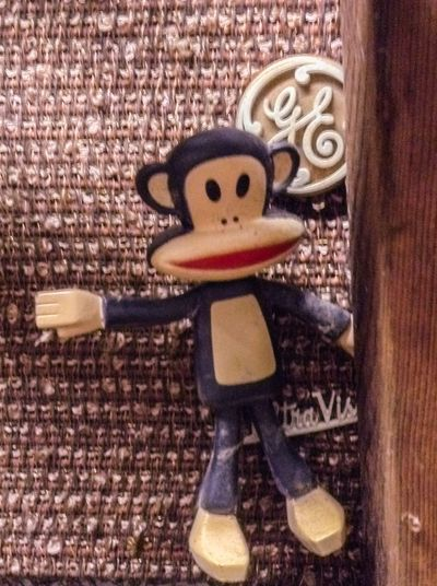 General Electric Monkey Ge