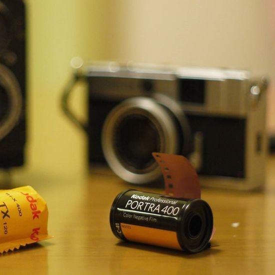 Portra400 Olympuspeneed Film Filmcamera オリンパスペンEED フィルムに恋してる Kodak フィルム ふぃるむカメラ フィルム部 ハーフサイズカメラ 写真好きな人と繋がりたい ファインダー越しの私の世界 カメラ好きな人と繋がりたい コダック ポートラ400 Halfsizecamera オリンパスPENEED Oldlens GF2 Lumix Panasonic  Pentax Pentaxlens 50mmf2 lumixgf2 オールドレンズ オールドレンズ部 オールドレンズに恋してる ペンタックスレンズ