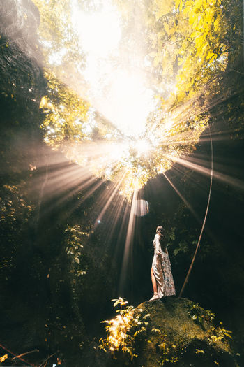 Woman standing by tree against bright sun