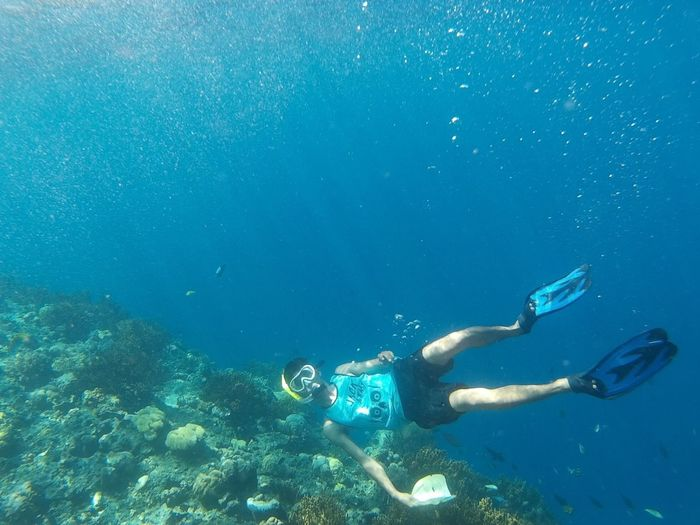 Snorkeling Diving Finding Nemo Deepsea Actioncam Icantbreathe Photounderwater Damniloveindonesia