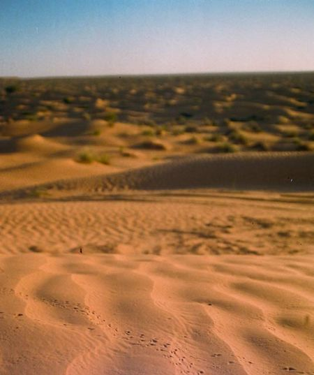 View above the dune Arid Climate Beauty In Nature Desert Desert No People Sand Sand Dune Sky