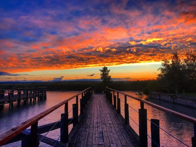 Lost In The Landscape Sunset Water Sky Railing Pier Cloud - Sky Tranquil Scene Beauty In Nature Nature Scenics Jetty Outdoors Wood Paneling Tranquility Idyllic The Way Forward Wood - Material Tree Built Structure Lake