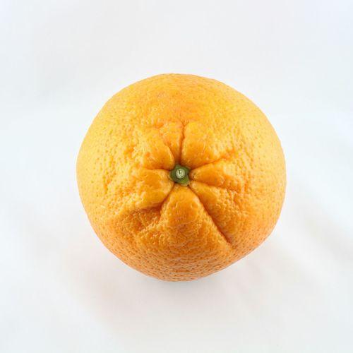 Apfelsine Orange Vitamine Obst Fruit Fruits Juice Saft  Juicy