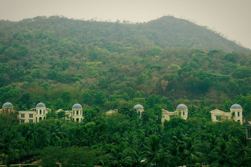 Homes in Forest Nature Photography Nature On Your Doorstep Naturelovers Greenery Mountain_collection Morning Photography Random Shots Hillside Mountains And Sky Mountains And Valleys Yeoor Hills Cloudyday Forest Trees Forest View Thane Green Color Green Green Green!  Forest And Mountain Row House View From The Window... Mountain Range Clauds And Sky Houseintheforest Greenery Random Shots Stories From The City Go Higher