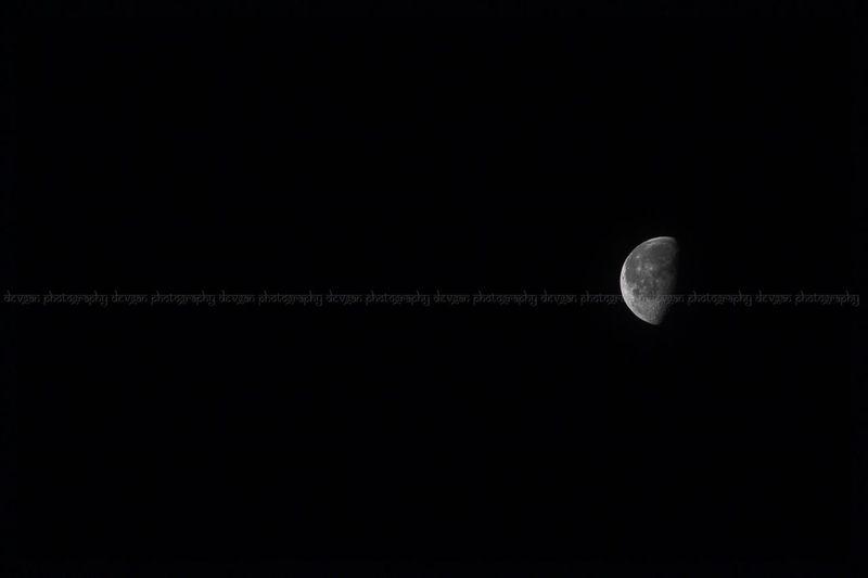Walking Around Good Night Moon Night