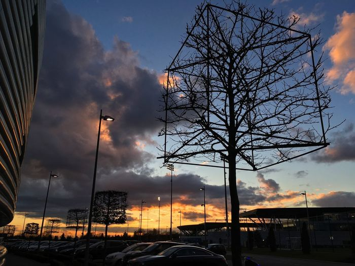 Yesterday's colours Dawn Makoto Shinkai Sky Cloud - Sky Bare Tree Sunset No People Outdoors Silhouette Built Structure Architecture Building Exterior Tree Nature Day