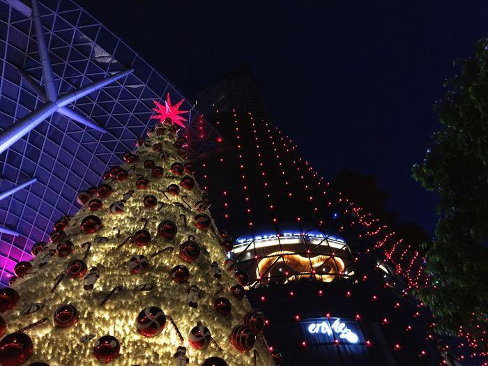 Best Christmas Lights Whatsup🙃 First Eyeem Photo