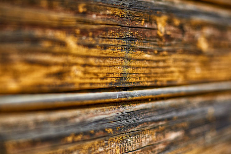 Close-up of old wooden plank
