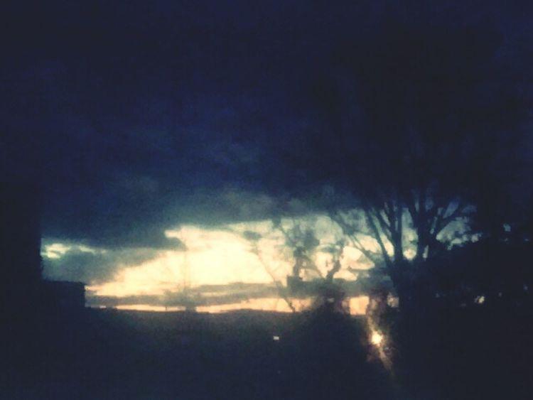 My World , My Nature