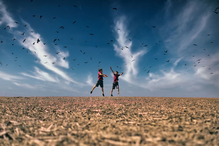 Kids jumping in a field with birds