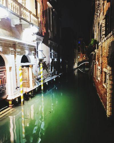 Venecia bella