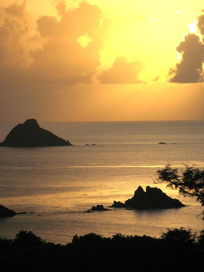 Beach Beauty In Nature Day Horizon Over Water Idyllic Nature No People Outdoors Scenics Sea Silhouette Sky Sunset Tranquil Scene Tranquility Tree Water Frenchwestindies Stbarths Stbarth Landscape_photography