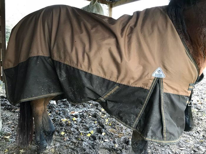 Pferdedecke Outdoors Pferd Horse Paard Regen Kieffer Pferdebedarf