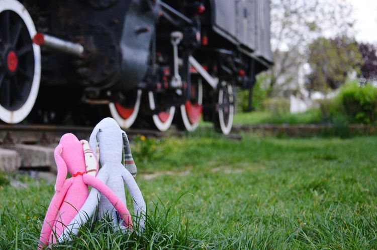 Toy Rabbit Toyphotography Toys Toy Train Steamtrain Toyrabbit Eye4photography  Popular Popular Photos Week On Eyeem Love Plush Bunny Plush Toy Plushtoy Plush Hello World Sky And Clouds Steam Trains Balaton - Hungary Rabbit Showing Imperfection Millennial Pink