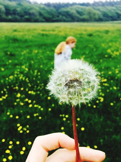 Friends Dandelions Dandelion Field Dorset Nature Outside