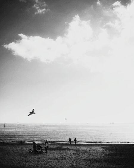 Sea Beach Water Horizon Over Water Sky Flying Nature Beauty In Nature Bird Cloud - Sky Sand Scenics Tranquil Scene Vacations Outdoors Sunset Silhouette Tranquility Day Summer Mobilephotography Tinypeopleinbigplaces Minimalism Minimalobsession