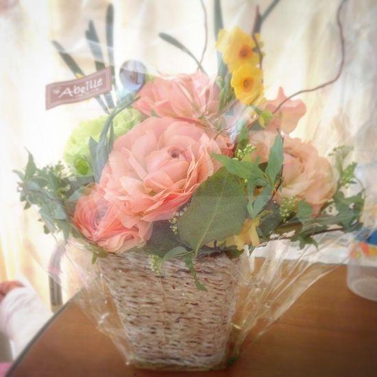 Kyoto Japan Beautiful Flowers IPhone 京都 日本 入院 キレイな花 大切な花