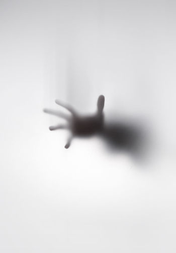 Close-up of silhouette hand against white background