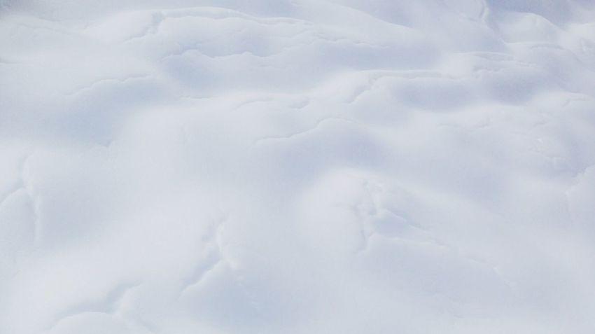 Snow Winter Iponeography