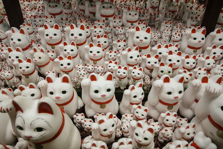 Cats Cats Of EyeEm Culture Culture And Tradition Cultures Japan Japanese  Japanese Culture Japanese Style Japanese Temple