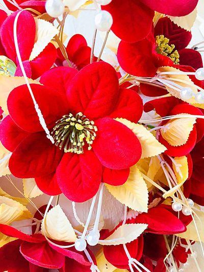 Red Flower No