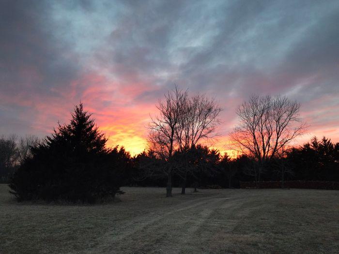 Kansas January