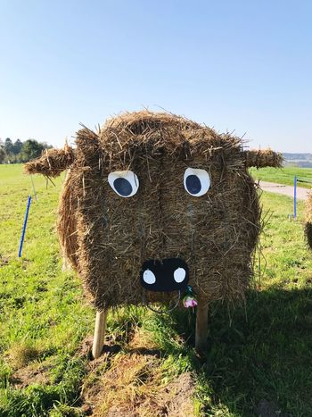 Straw cow EyeEm Selects Hay Humor Day Field Grass Scarecrow Clear Sky No People Outdoors Sky Nature Hay Bale Haystack