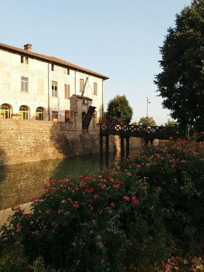 Pagazzano Castle Flower Architecture Built Structure Outdoors Building Exterior Day No People Nature Sky Castle Pagazzano Castle EyeEmNewHere
