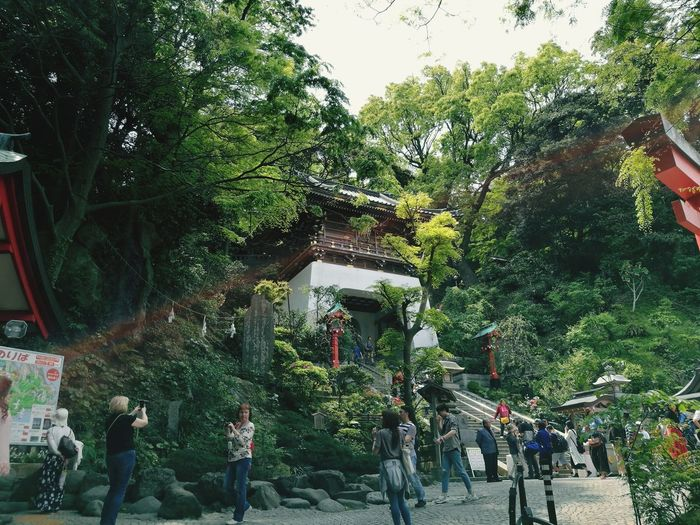 Real People Day Tree Outdoors Men Leisure Activity Nature Large Group Of People Lifestyles Women Boys Growth People Childhood Water Sky Adult Japan Photography Japanese Culture Japanese Garden Japanese Style Japanese Temple Spirituality Religion Foest🌳